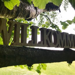 Welcome to Wildewiese