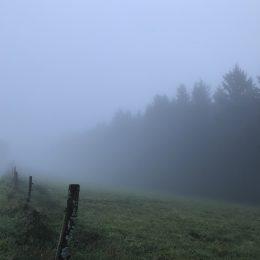 fog hike