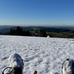 At the very top in Wildewiese