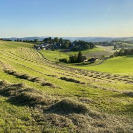 Hay time Wildewiese