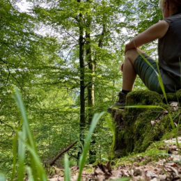 time out – forest time